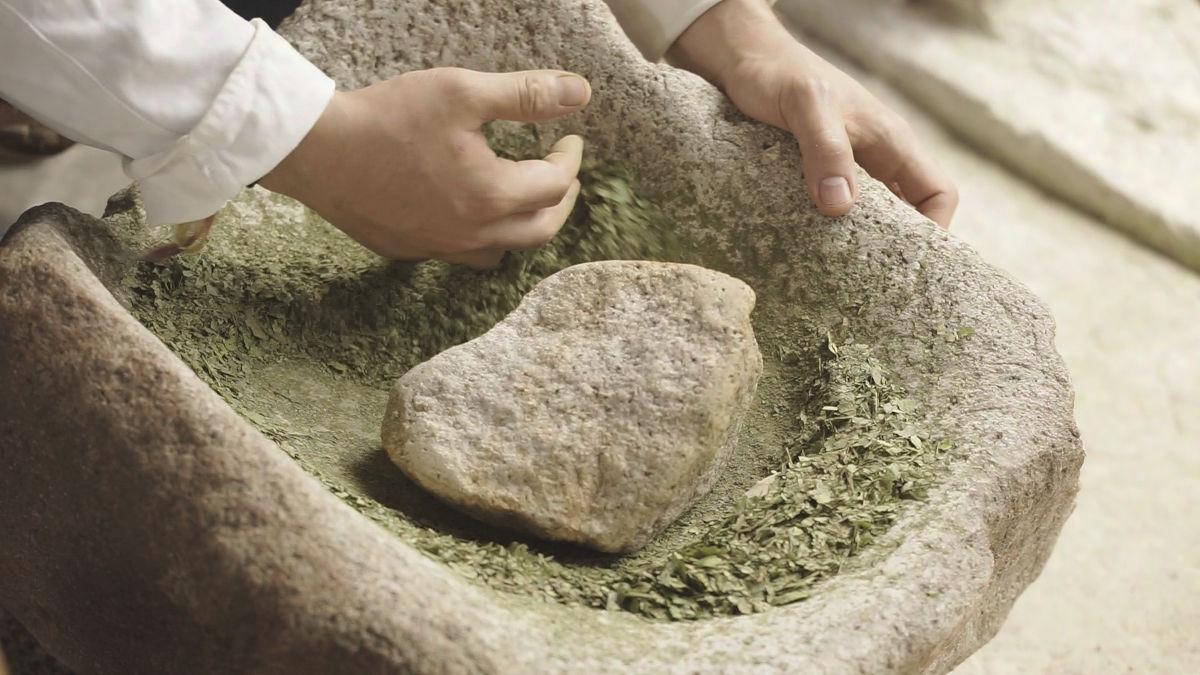 Hayo: Desde la mata hasta la harina
